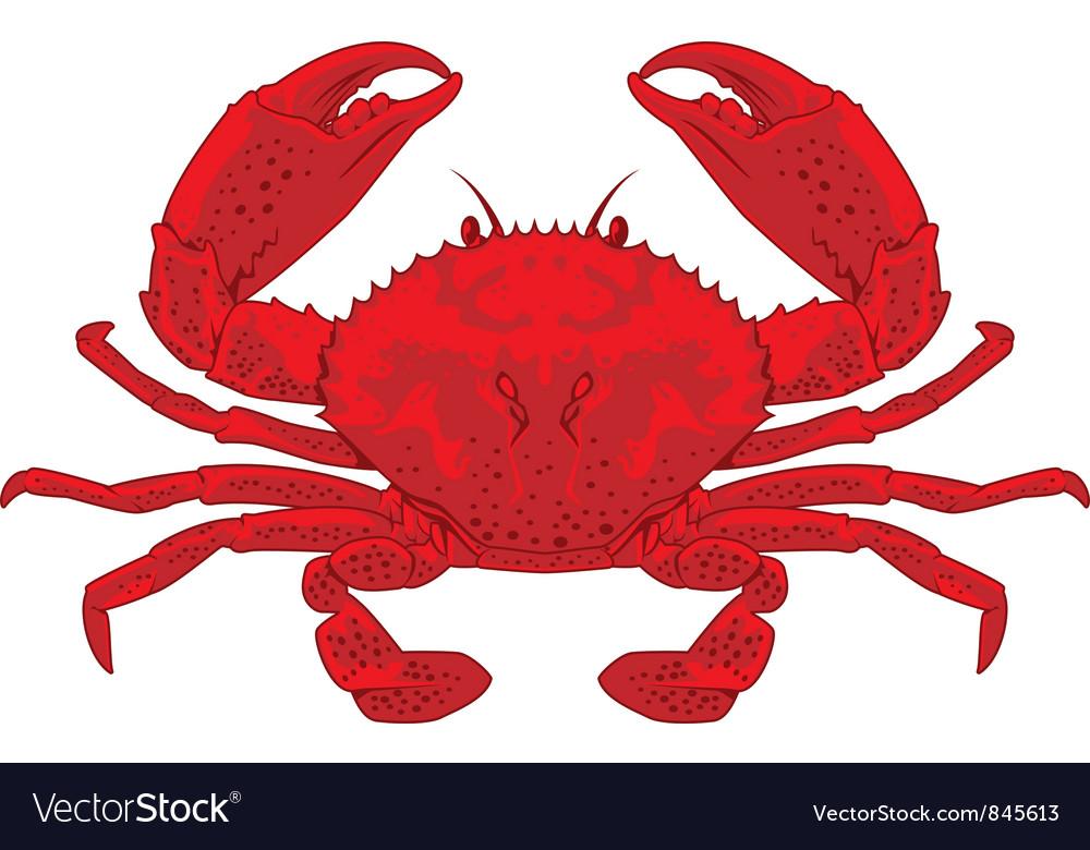 red crab royalty free vector image vectorstock rh vectorstock com crab factory cromer crab factory scotland