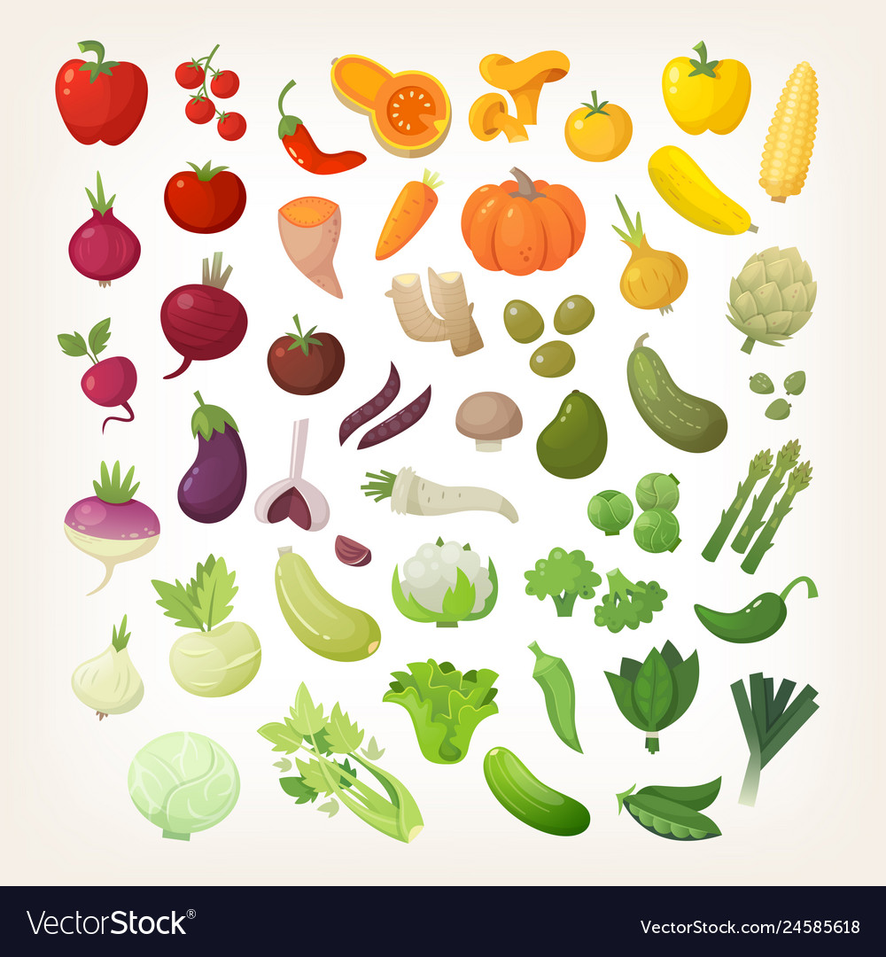 Set of common vegetables in rainbow layout