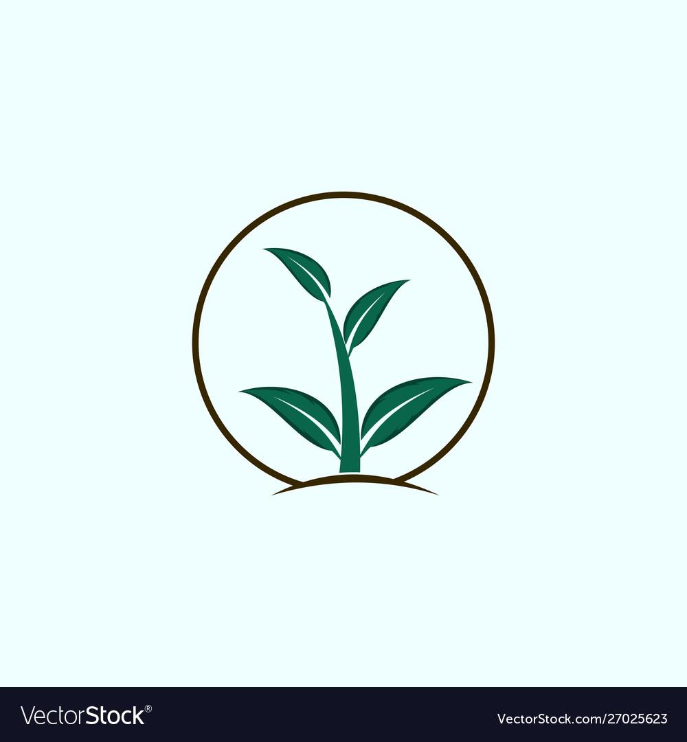 Leaf in circle growth nature creative logo