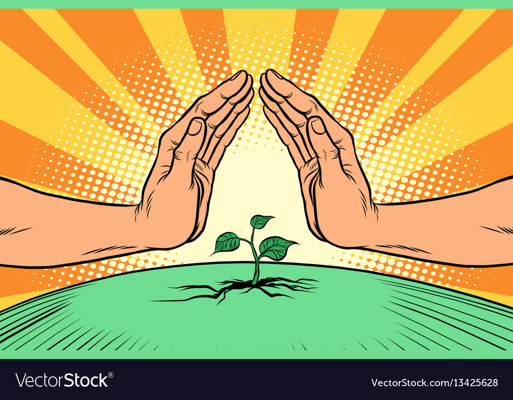 Human hands protecting a green sprout environment