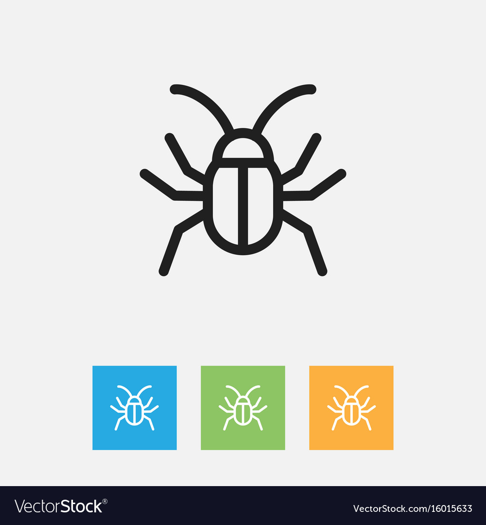Of zoology symbol on cockroach vector image