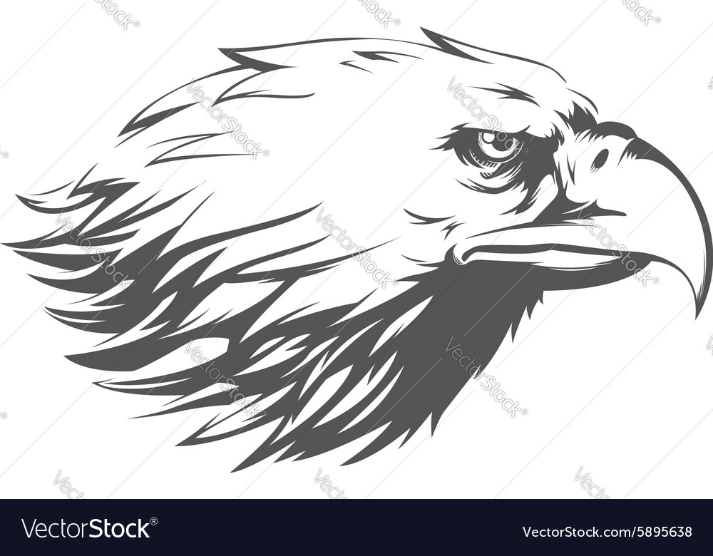 Eagle head side view silhouette