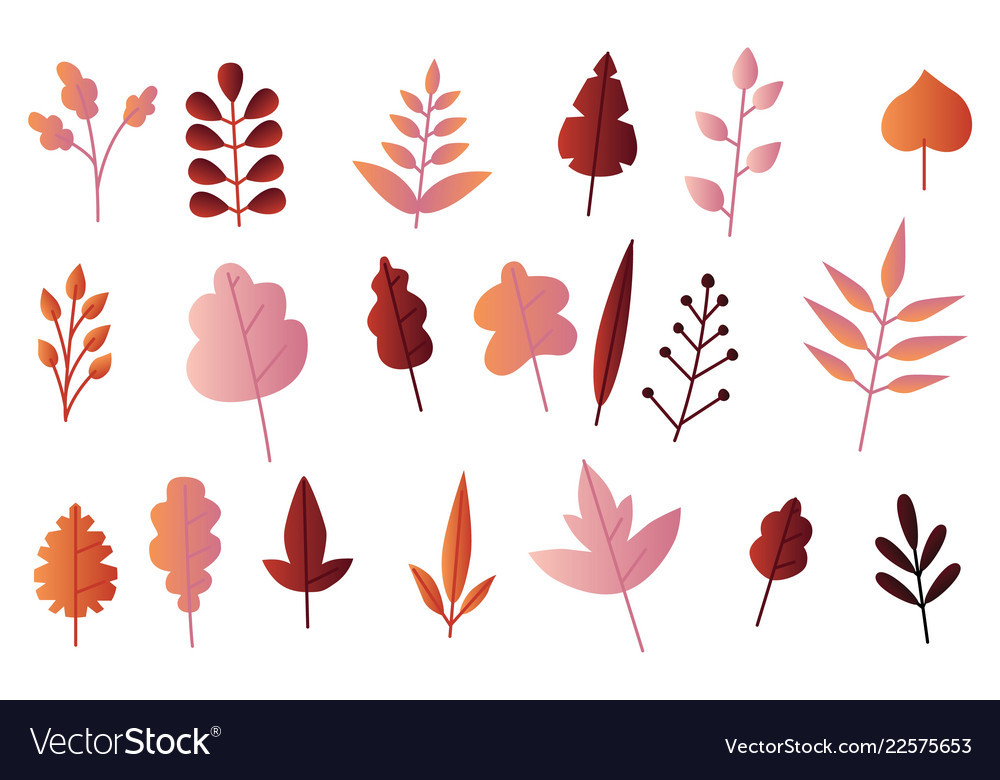 Autumn leaves set in flat