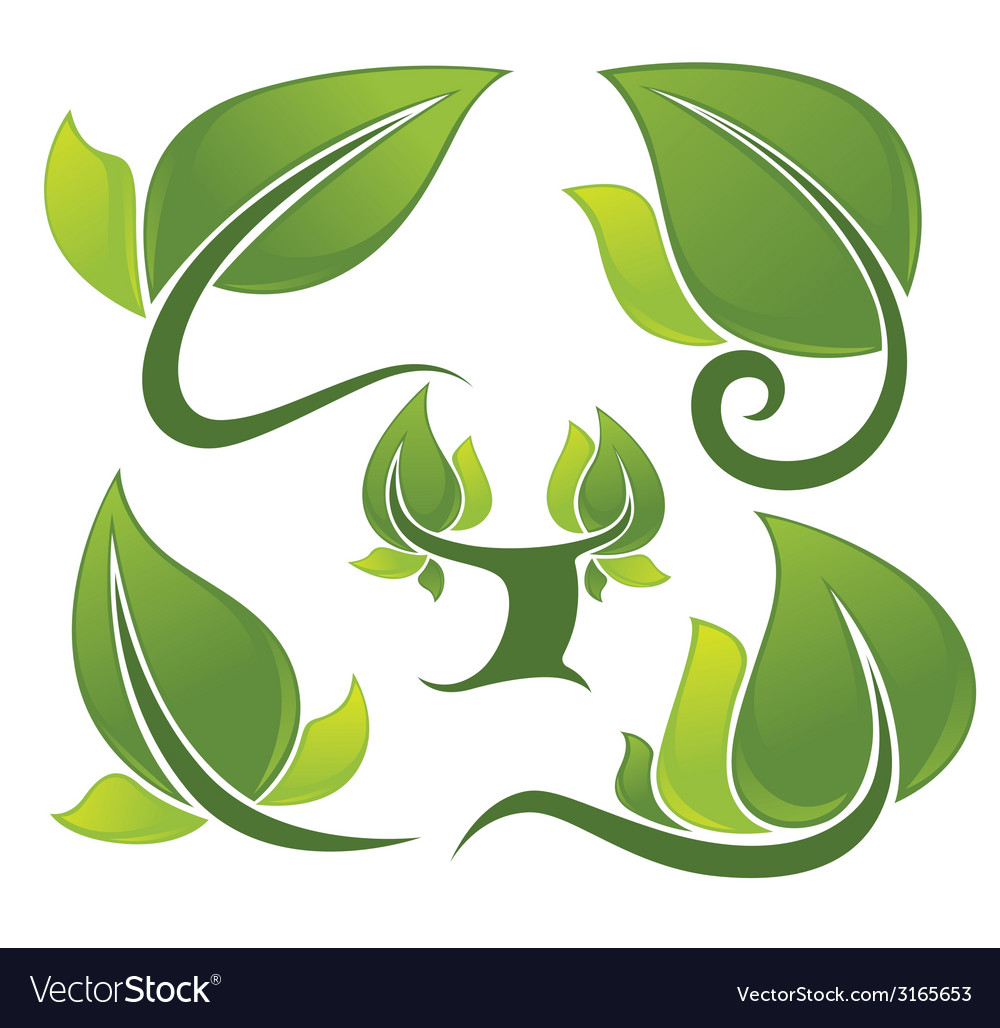Tree and leaves vector image