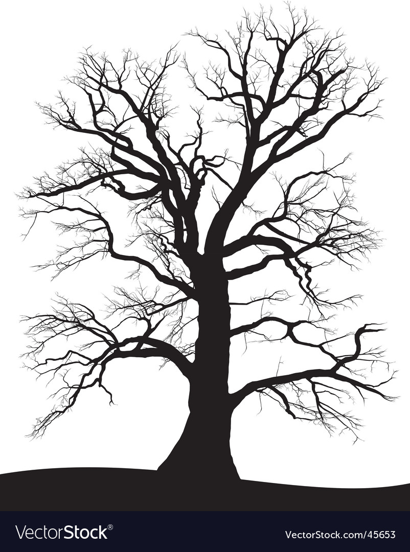 tree silhouette clip art. 2010 pine tree silhouette clip art. pine tree silhouette clip art. about