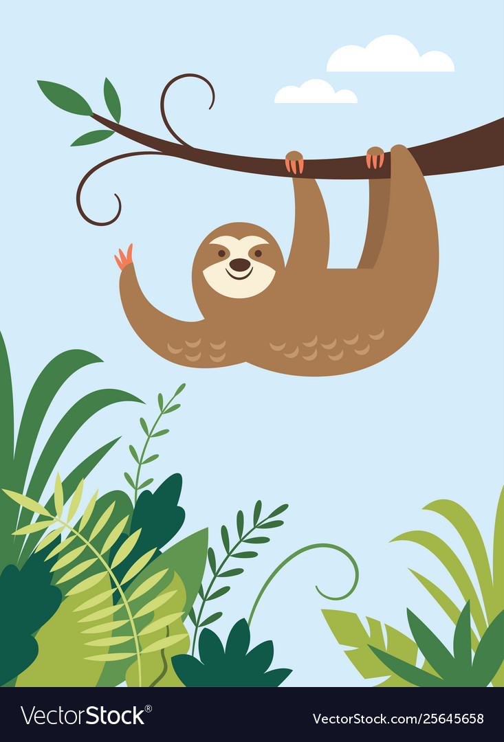 Cute sloth hanging on branch tree