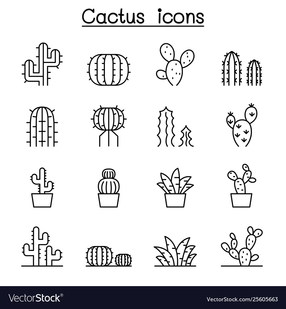 Cactus and succulent plant icon set in thin line