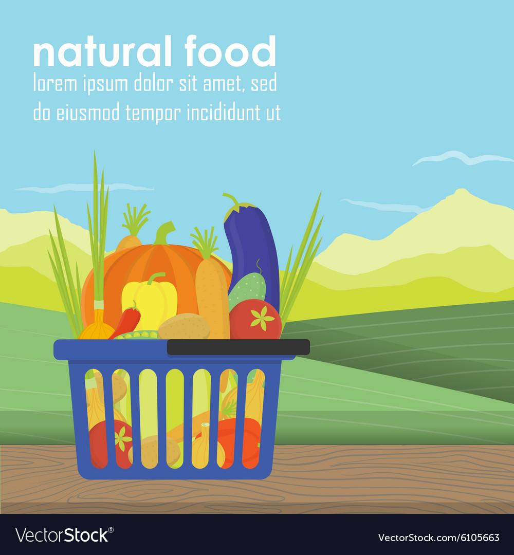 Shopping basket full of healthy organic