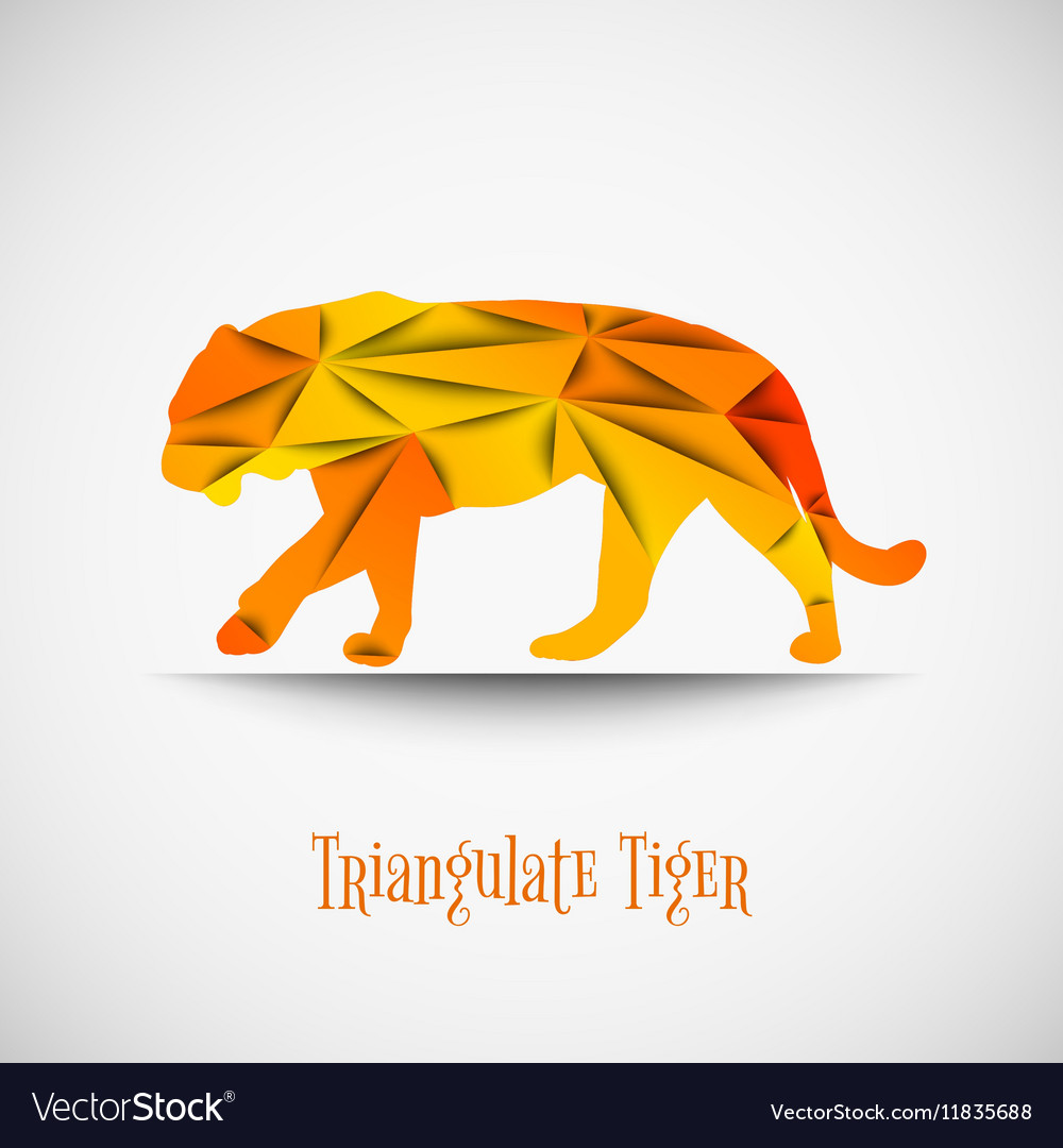 Orange triangulate tiger