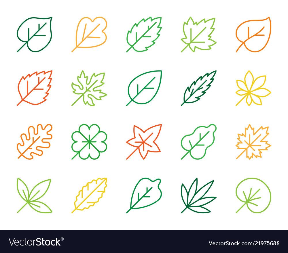 Organic leaf simple color line icons set