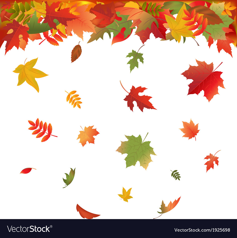 falling leaves royalty free vector image vectorstock