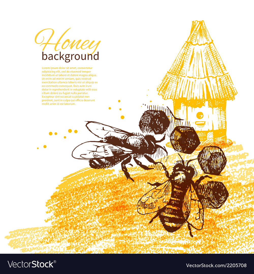 Honey background with hand drawn sketch