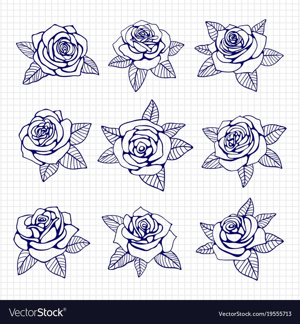 Ballpoint pen drawing roses set