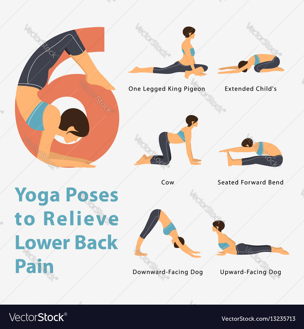 Infographic Yoga Poses To Relieve Lower Back Pain Vector Image