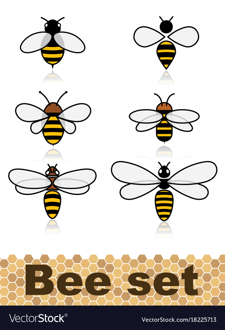 Set of stylized bees collection of logos