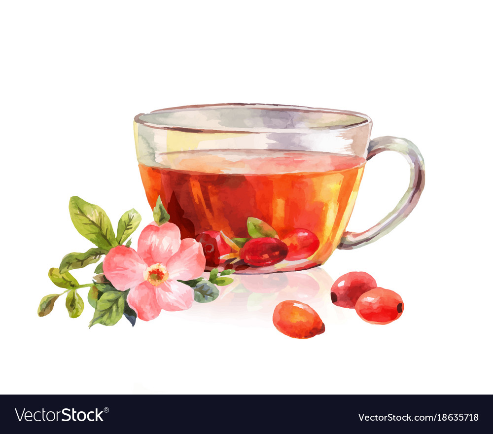 Glass mug of herbal tea drink rosehip tea
