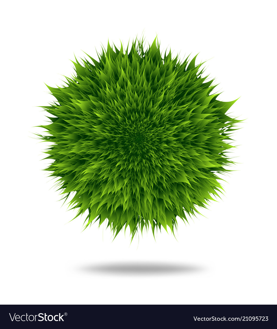 Green fluffy pompom or hair ball isolated on white