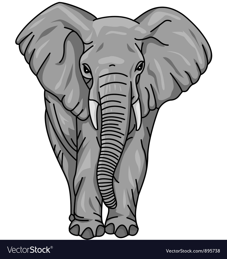 african elephant royalty free vector image vectorstock rh vectorstock com elephant vector free elephant vector art