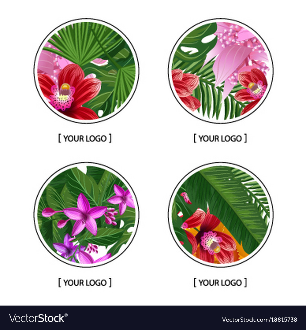 Tropical palm leaves and exotic flower