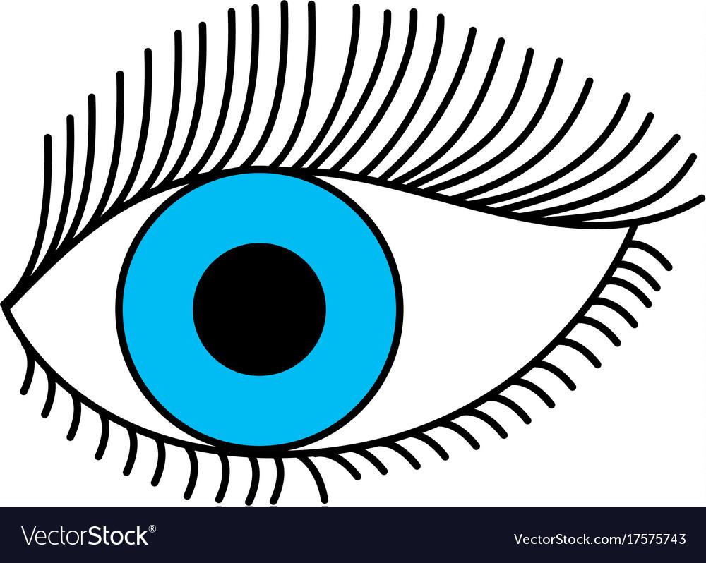 Blue eye look eyelashes vision cartoon