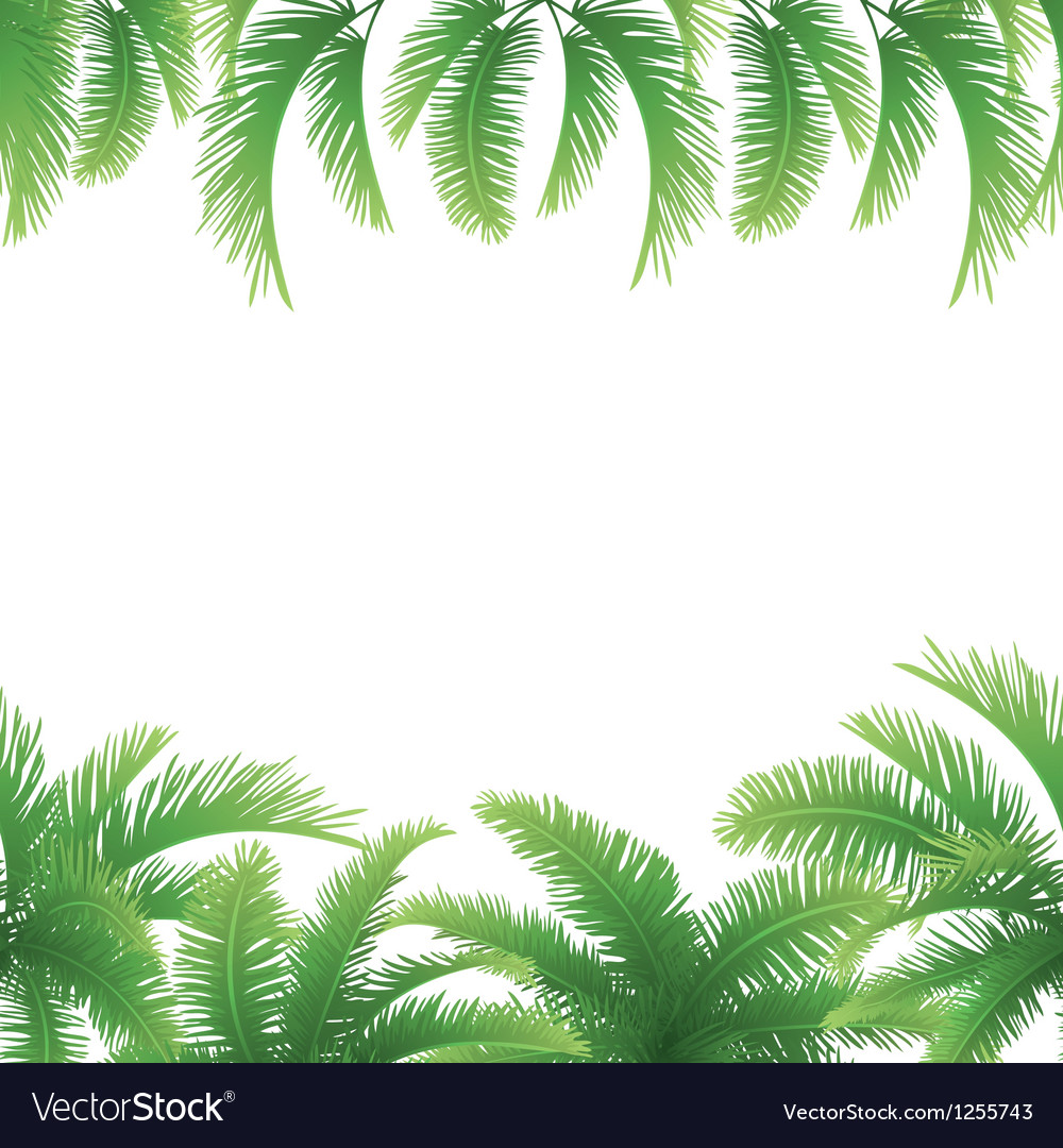 seamless background palm leaves royalty free vector image