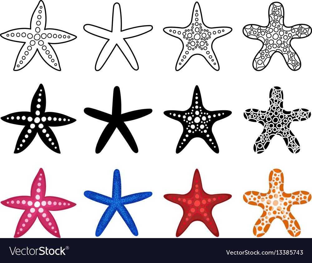 Starfish icon set vector image