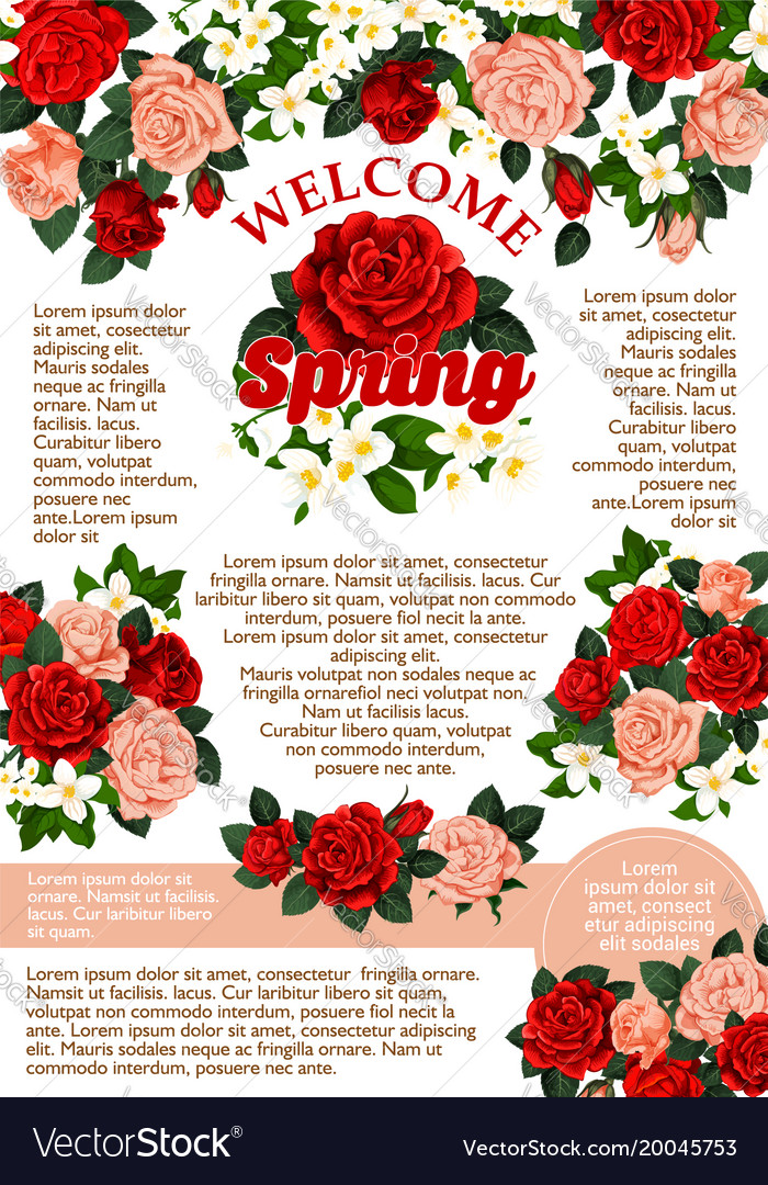 Rose Flowers Poster For Spring Season Royalty Free Vector