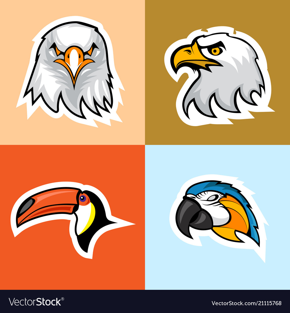 Eagle parrot and toucan logo set
