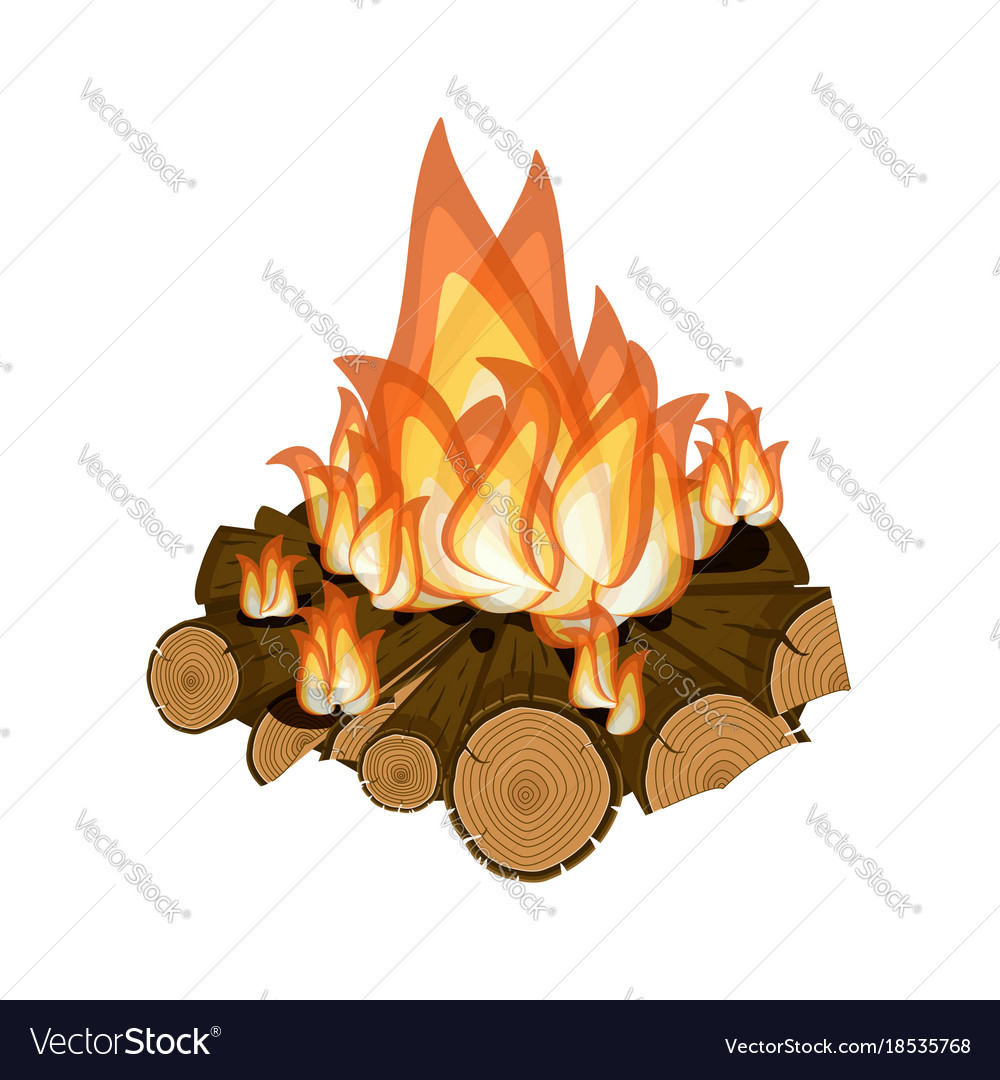Wood burning bright campfire isolated on white