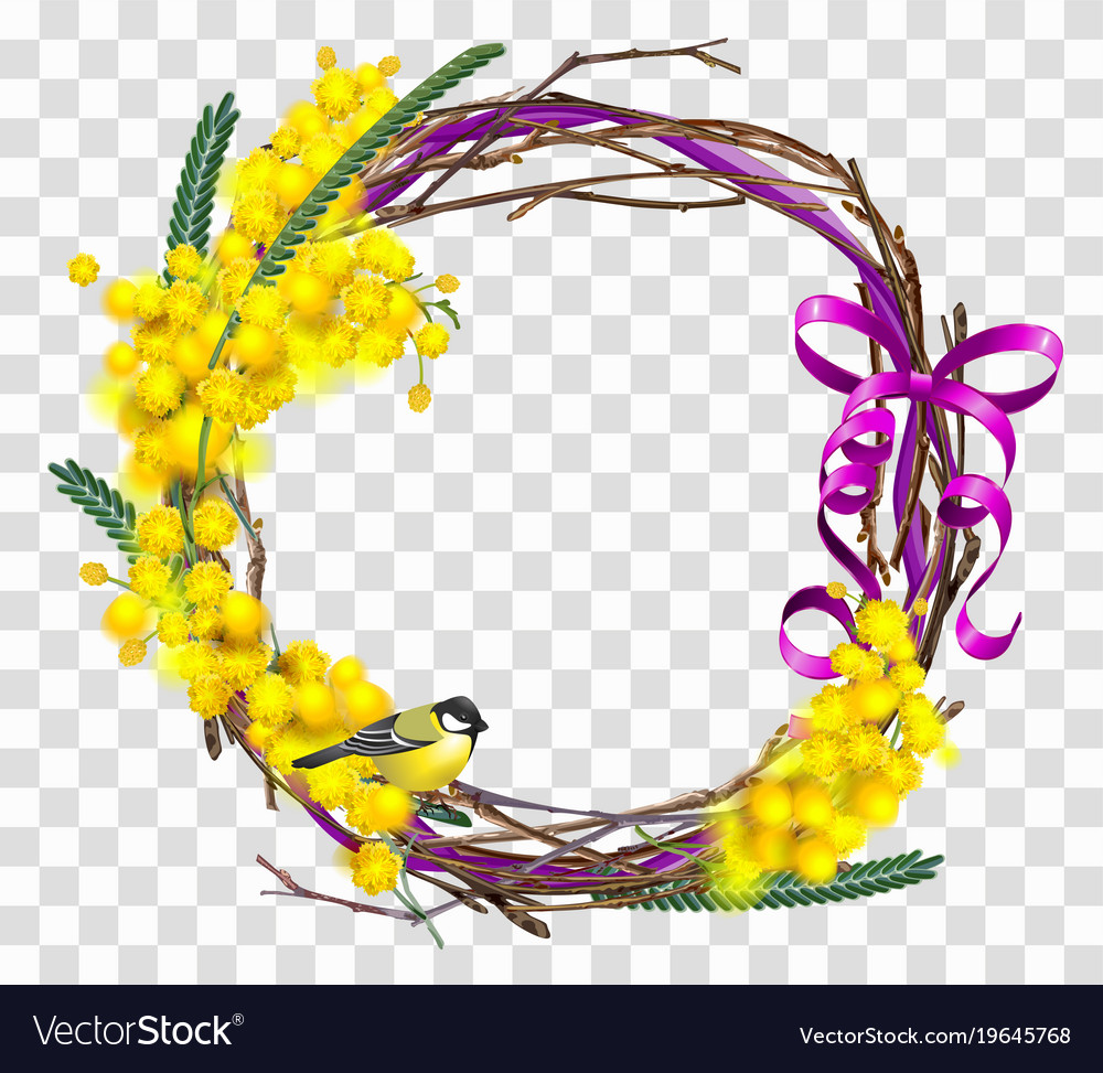 Yellow Mimosa Flower Branch With Wreath With Red Vector Image