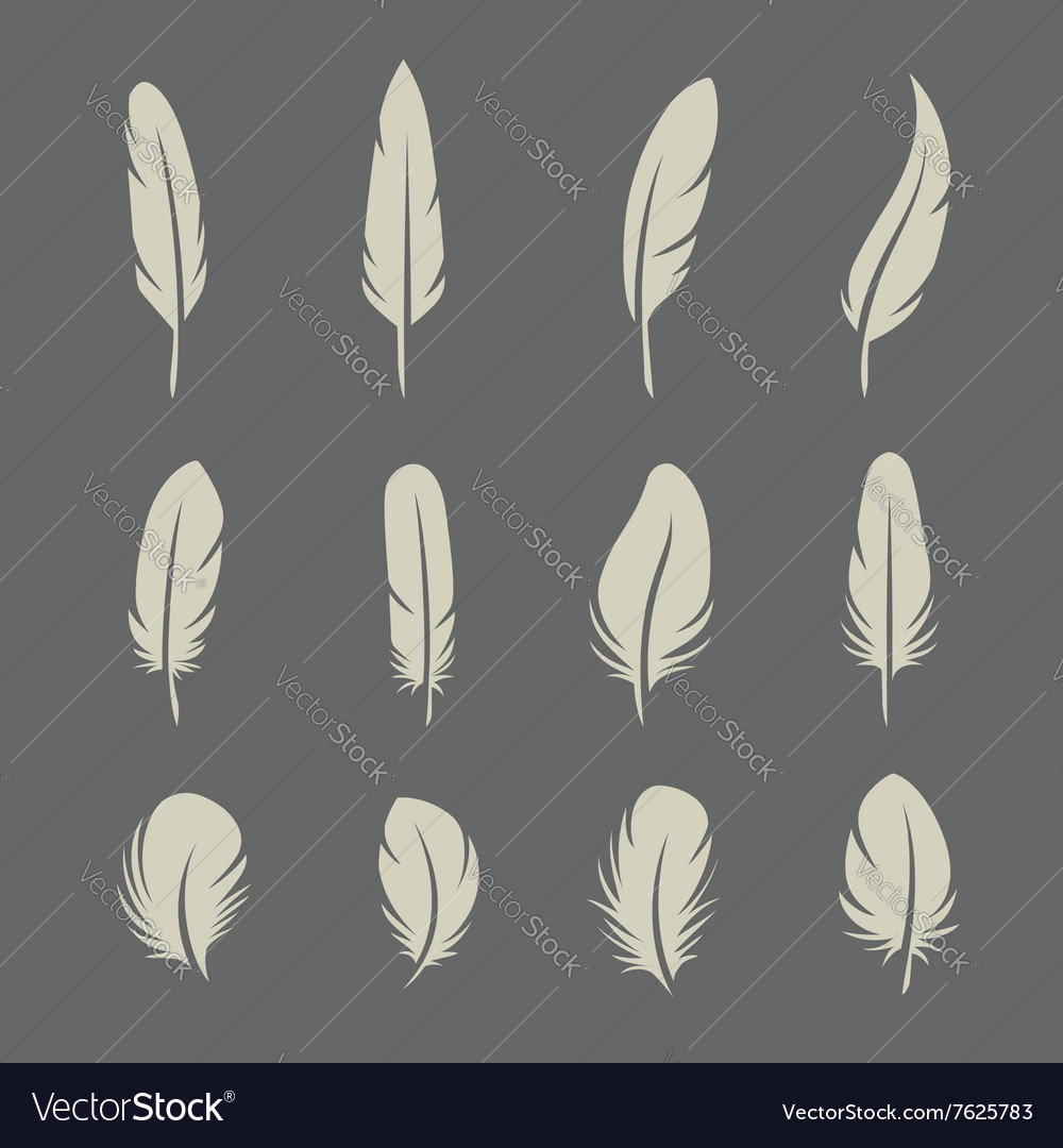 Feathers retro set
