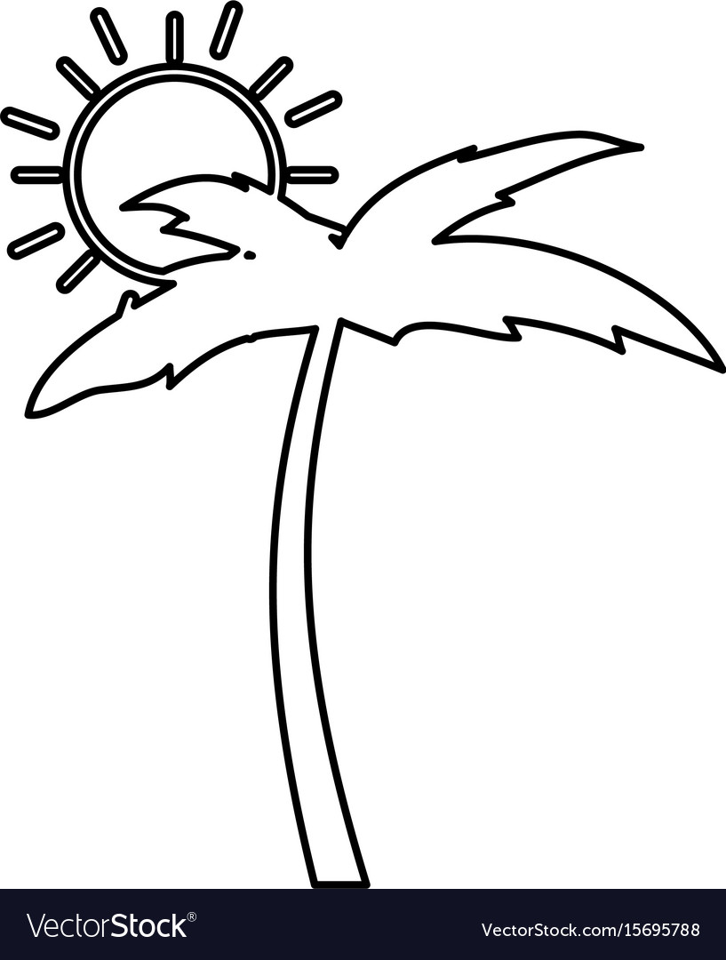 Tree palm beach with sun