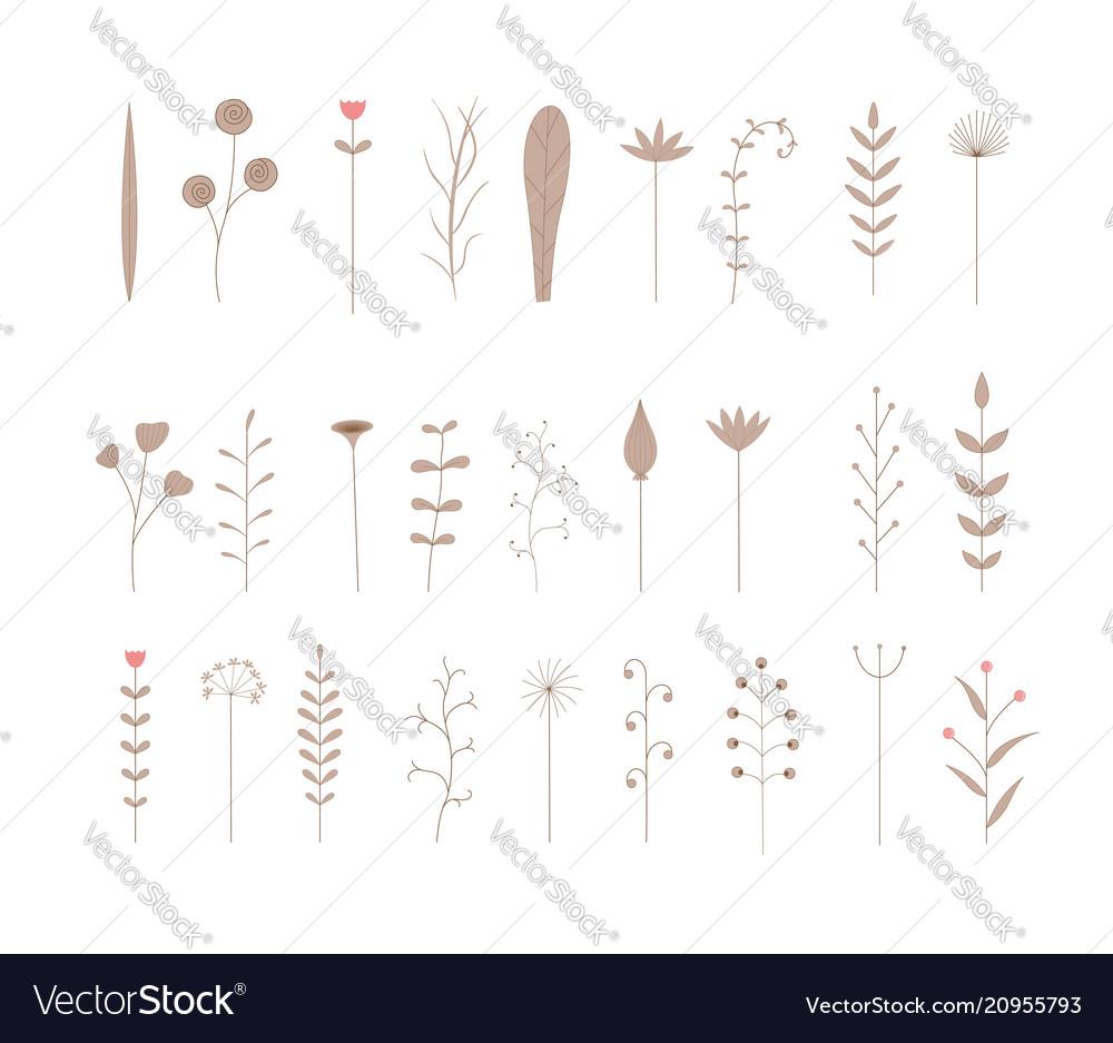 Set of seamless botanical brushes set of stylized