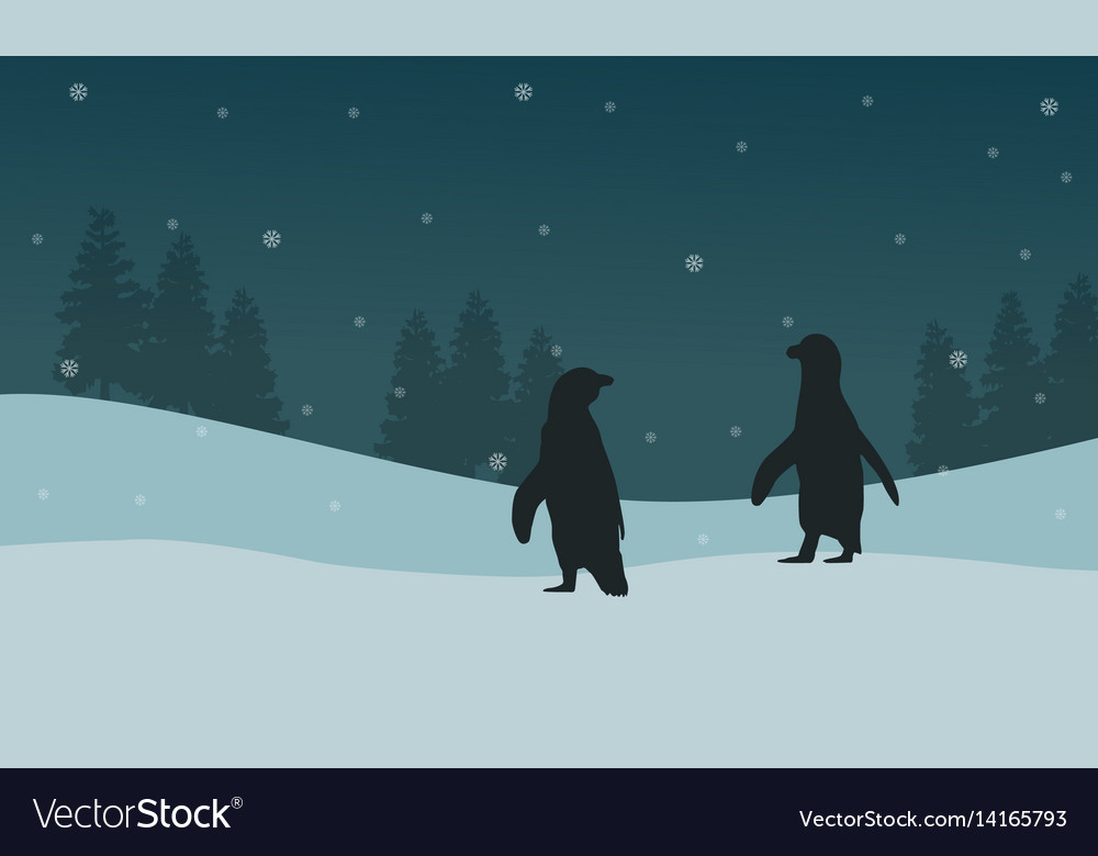 Silhouette penguin and spruce landscape