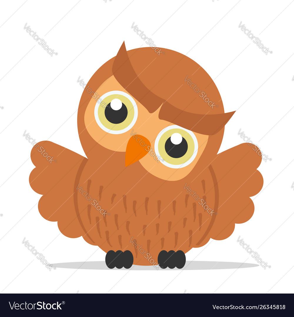 Cute owl cartoon bird