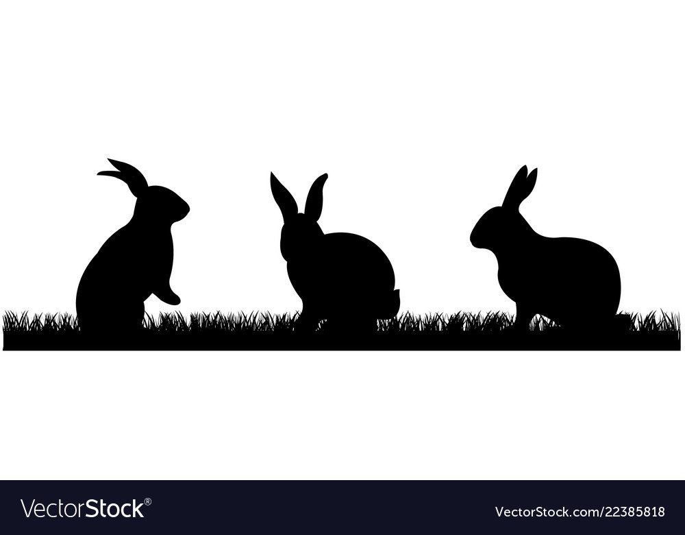 Rabbits with grass