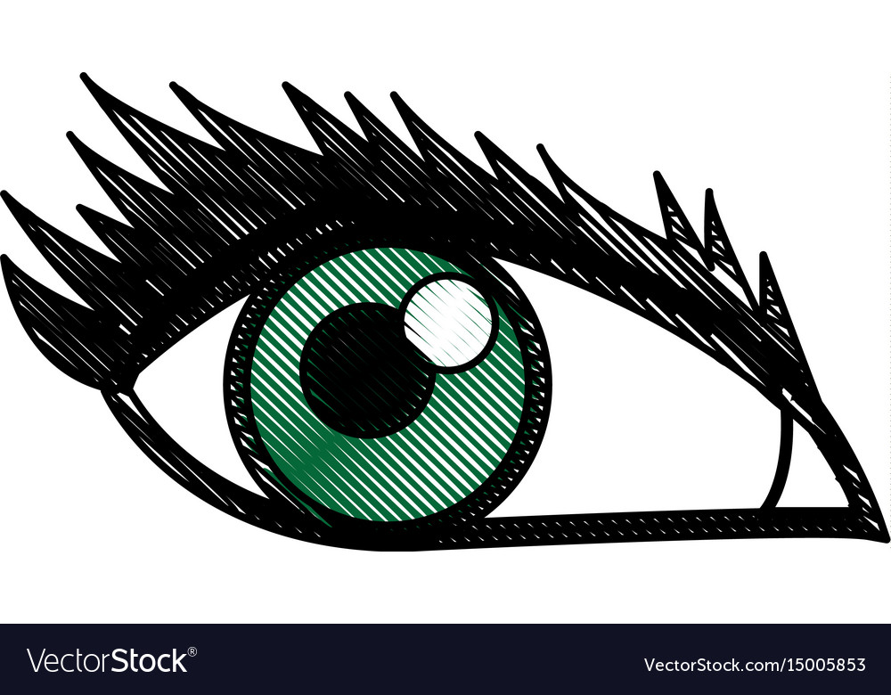 Cartoon Eye Human Look Watch Icon Royalty Free Vector Image