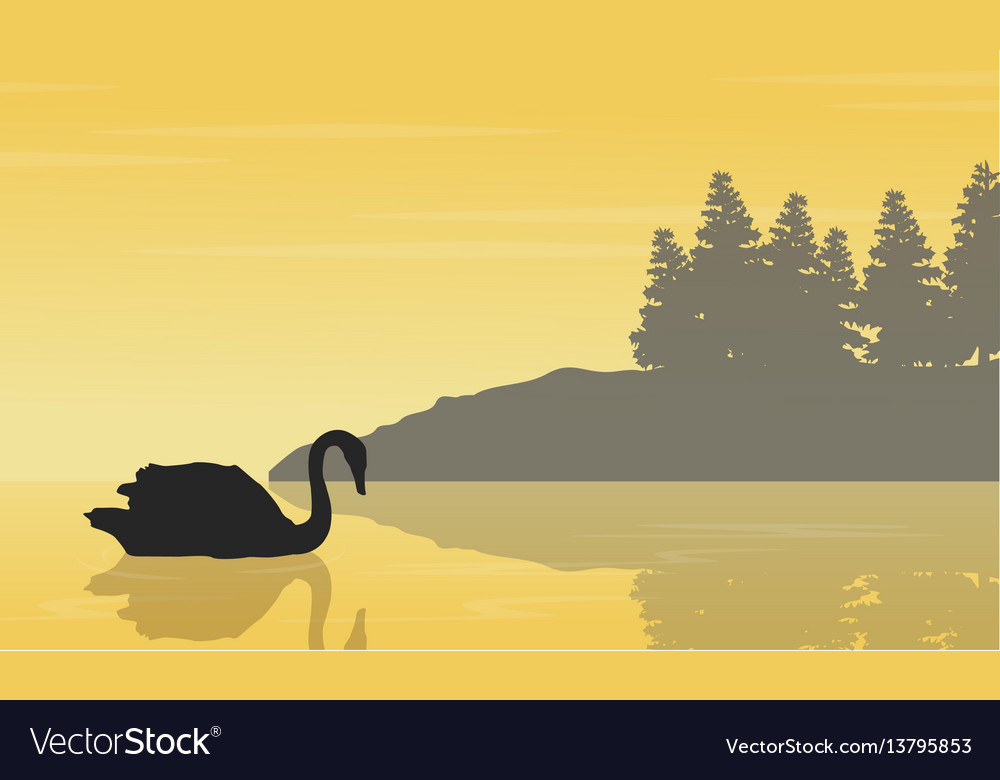 Landscape of swan on lake silhouettes collection