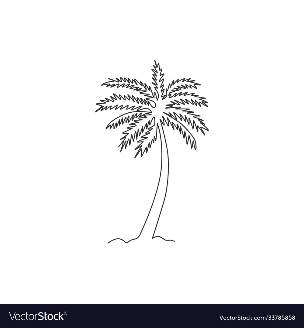 One continuous line drawing cocos nucifera