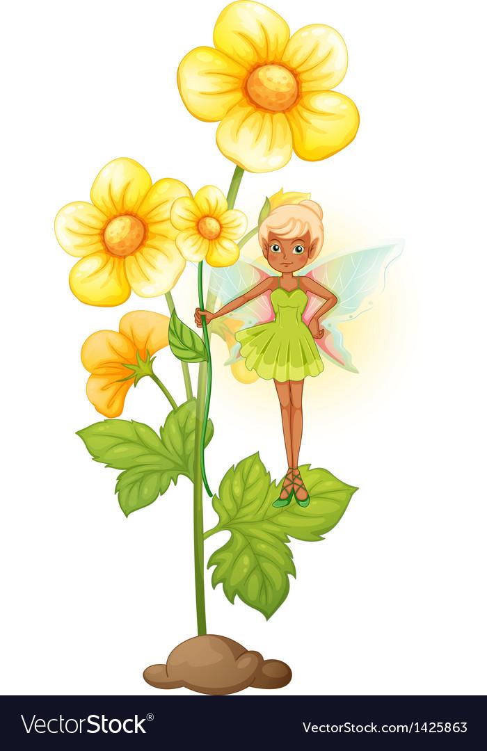 A sunflower with a fairy