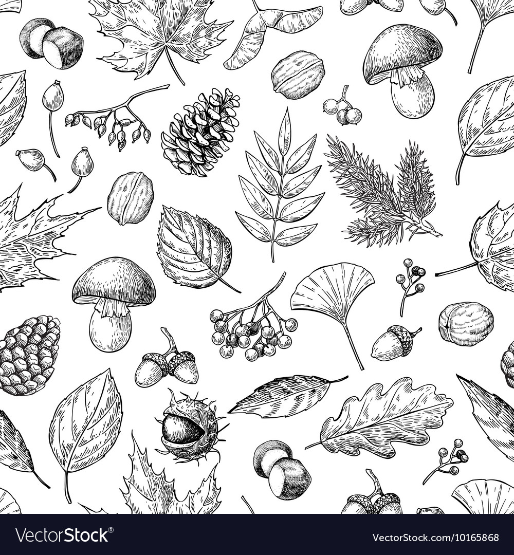 Autumn seamless pattern with leaves