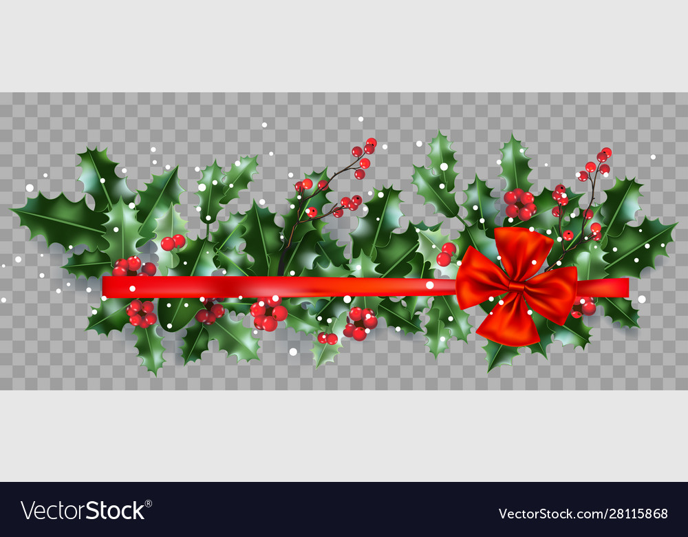 Holly and ribbon on transparent background