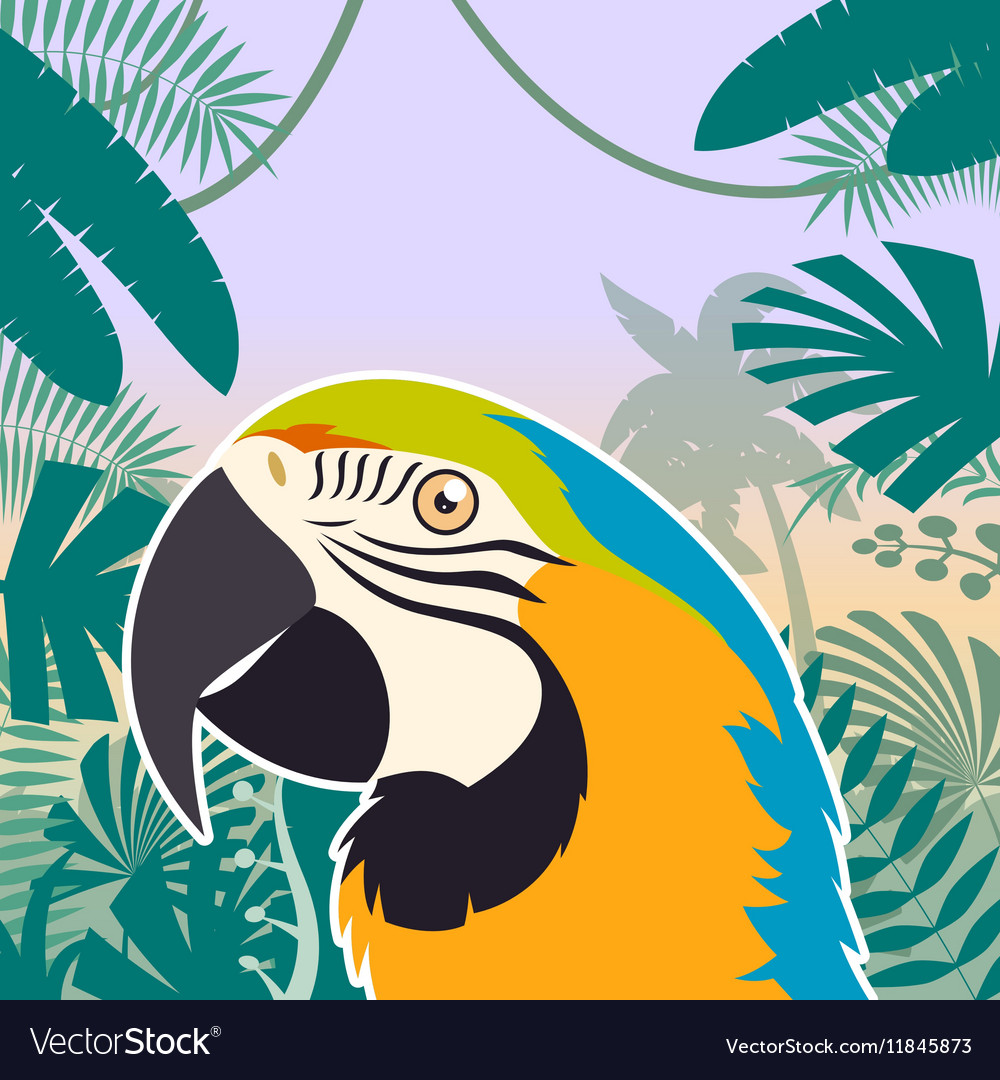Macaw on the Jungle Background