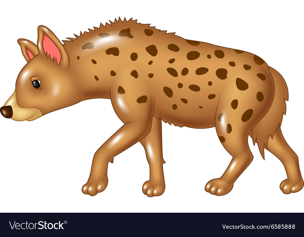Cartoon hyena walking isolated on white background vector image