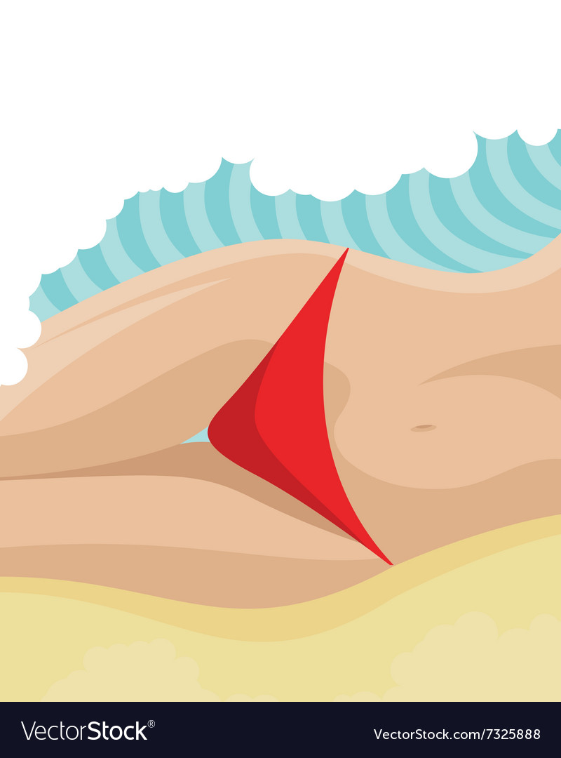 Sexy belly on the beach vector image