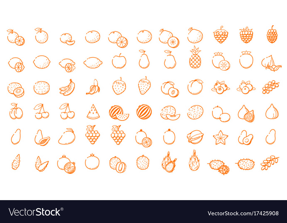 Big icon logo set - fruit and berries thin line