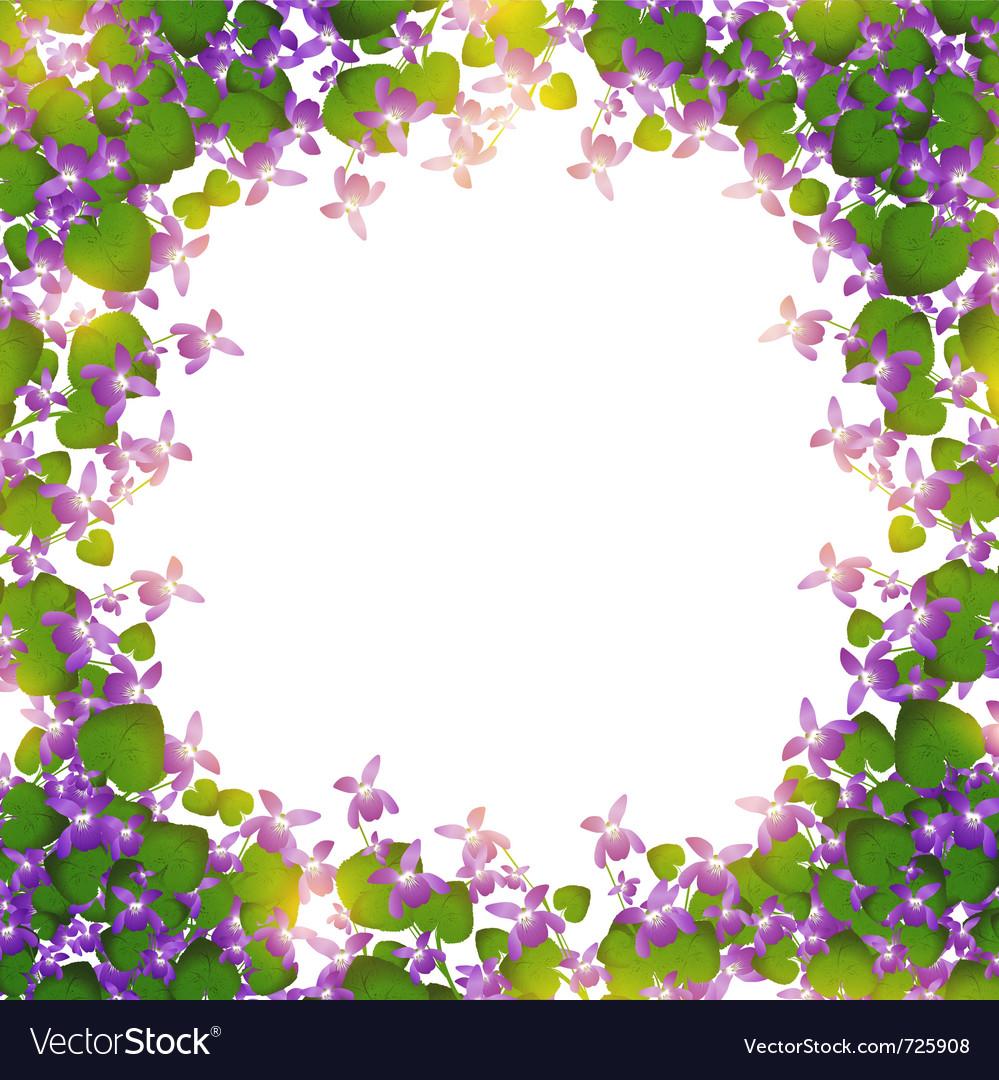 Border of wild violet