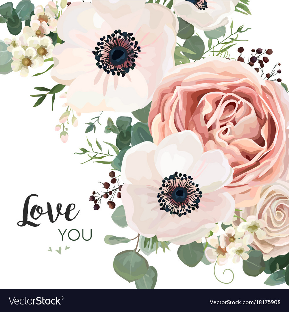 Floral Card Design Garden Flower Pink Peach Rose Vector Image