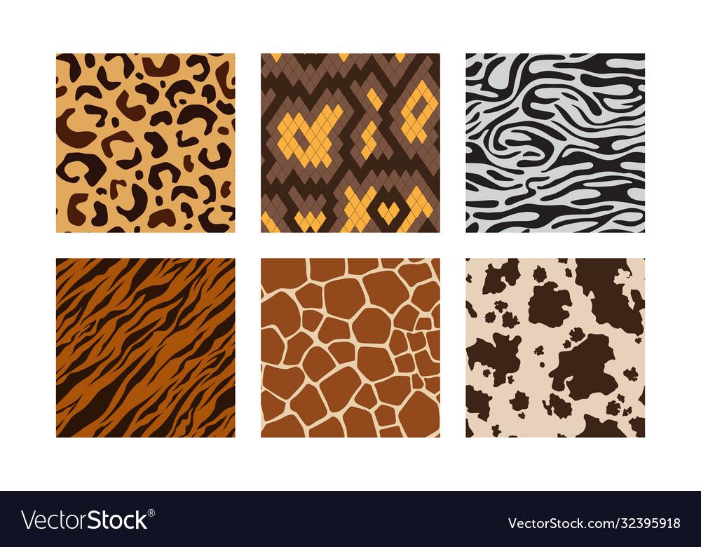 Animal skins pattern african jungle animals