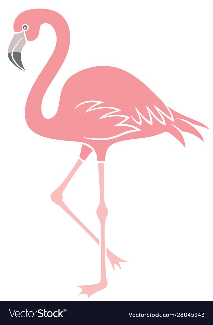 Flamingo bird icon